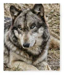 Wolf Portrait Fleece Blanket