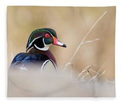 Wood Duck Or Carolina Duck Portrait Fleece Blanket