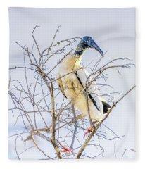 Wood Stork Sitting In A Tree Fleece Blanket