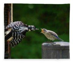 Woodpecker Feeding Bluebird Fleece Blanket