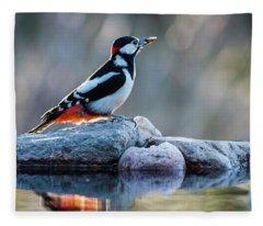 Woodpecker In Backlight Fleece Blanket