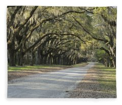 Wormsloe Entrance Road Fleece Blanket