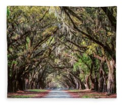 Wormsloe Plantation Oaks Fleece Blanket