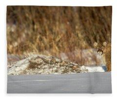 Yampa Glare  Fleece Blanket