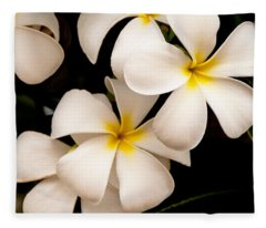 Yellow And White Plumeria Fleece Blanket