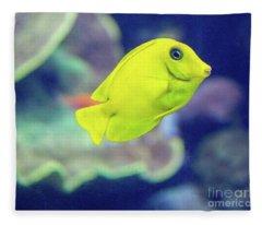 Yellow Boy Fleece Blanket