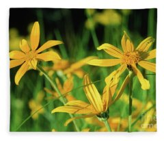 Yellow Daisies Fleece Blanket