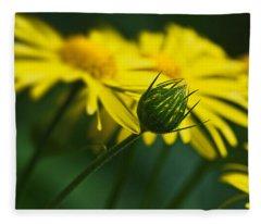 Yellow Daisy Bud Fleece Blanket