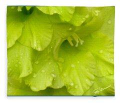 Yellow Gladiola Refreshed Fleece Blanket