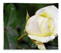 Yellow Rose 2 Fleece Blanket