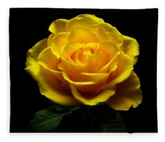 Yellow Rose 4 Fleece Blanket