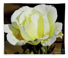 Yellow Rose Dew Drops Fleece Blanket