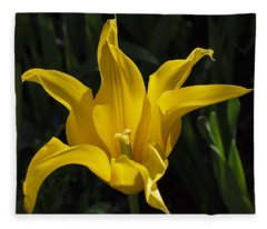 Yellow Star Tulip Fleece Blanket