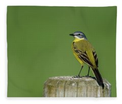 Yellow Wagtail Perching On The Roundpole Fleece Blanket
