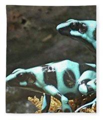 Spots And Striped Frogs Fleece Blanket