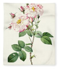 York And Lancaster Rose Fleece Blanket