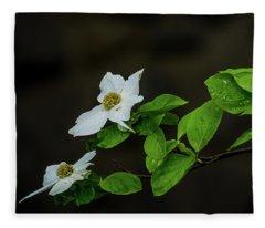 Yosemite Dogwoods Fleece Blanket
