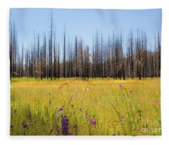 Yosemite Juxtaposition By Michael Tidwell Fleece Blanket