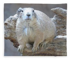 You Lookin' At Me? Fleece Blanket