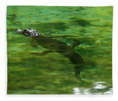 Young Alligator Fleece Blanket