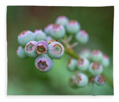 Young Blueberries Fleece Blanket