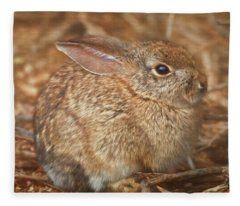 Young Cottontail In The Morning Fleece Blanket
