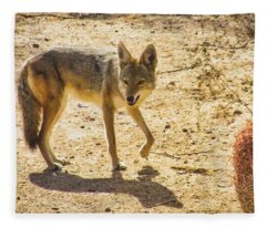 Young Coyote And Cactus Fleece Blanket