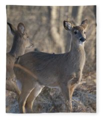 Young Deer In A Pack Fleece Blanket