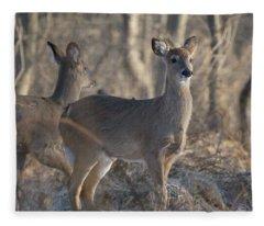 Young Deer In A Pack Fleece Blanket