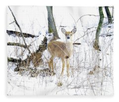 Young Doe And Spring Snow Fleece Blanket
