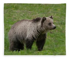 Young Grizzly Fleece Blanket