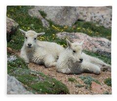 Young Mountain Goats Fleece Blanket