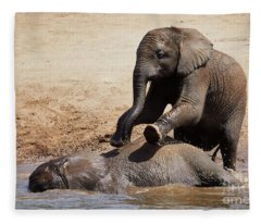 Young Playful African Elephants Fleece Blanket