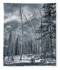 Land Shapes 35 Fleece Blanket