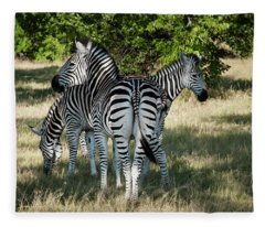 Three Zebras Fleece Blanket