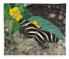 Fleece Blanket featuring the photograph Zebra Longwing Butterfly - 1 by Paul Gulliver