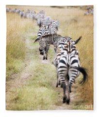 Zebra Migration In  The Masai Mara Fleece Blanket