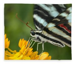 Zebra Swallowtail Drinking On The Fly Fleece Blanket