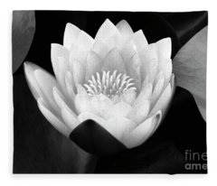 Waterlily Rising Fleece Blanket