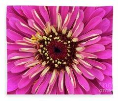 Zinnia Elegans Uproar Rose Fleece Blanket