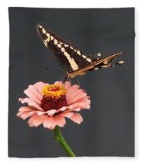 Zinnia With Butterfly 2702 Fleece Blanket