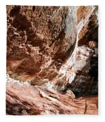 Zion--lower Emerald Pools Trail #2 Fleece Blanket