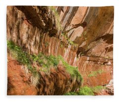 Zion--lower Emerald Pools Trail Fleece Blanket