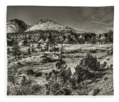 Zion National Park Along Rt 9 Fleece Blanket