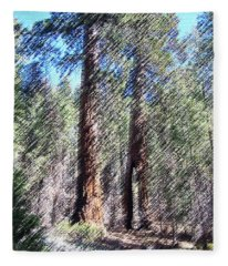 010219 Red Woods California Fleece Blanket