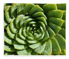 Aloe_polyphylla_8536.psd Fleece Blanket