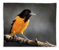 Fleece Blanket featuring the photograph Baltimore Oriole  by Allin Sorenson