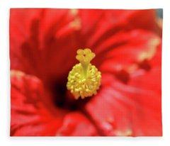 Blooming Beauty Fleece Blanket
