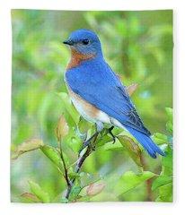 Bluebird Joy Fleece Blanket