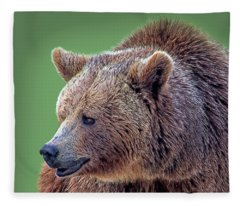 Brown Bear 5 Fleece Blanket